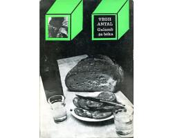 Végh Antal: Galamb és béka 590Ft Antikvár könyvek